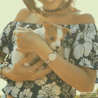 Vrouw met een klein hondje in de armen
